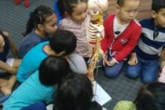 Group activity